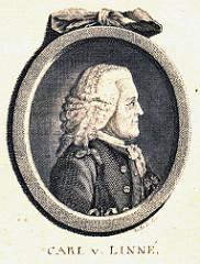 Carl v Linné - Skara kommun sous licence CC BY 2.0