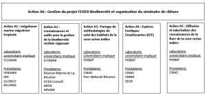Structure du programme FED/FEDER Biodiversité en actions