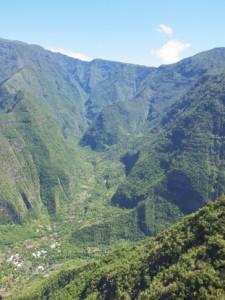 Forêt tropicale humide sur rempart