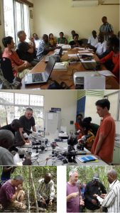 Taxonomic workshop and field sessions sept 27th to oct 6th 2016